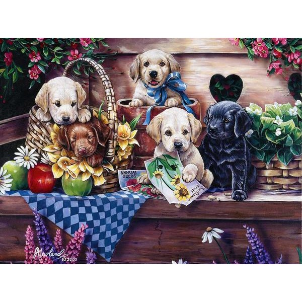 Five Puppies - Ships From US