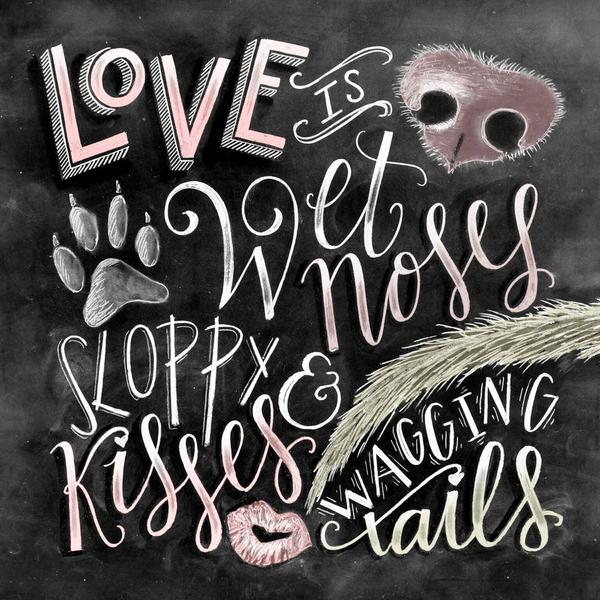 Love Is Wet Noses